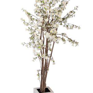 bloesemboom feestmateriaal verhuur